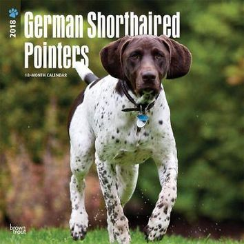 Pointers German Shorthaired Wall Calendar, German Shorthaired Pointer by