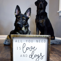 All You Need is Love and Dogs Sign