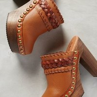 67 Collection Beth Mules