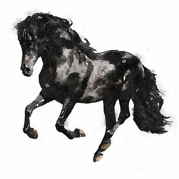 Watercolor Black and White horse - An Unframed Canvas Paper / Watercolor-Style, Contemporary & Modern Portrait Wall Art digital Print