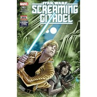 Star Wars Screaming Citadel #1