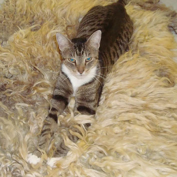 Cat Bed Cruelty Free Felted Wool Fleece Rug Pet Bed - Colored Lincoln/Corriedale - Supporting Small Farms of The United States