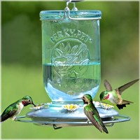SheilaShrubs.com: Antique Wide Blue Glass Hummingbird Feeder PP785 by Perky Pet : Hummingbird Feeders