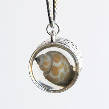 Secret garden silver plated pendant with speckled babylonia sea shell and turquoise pearl encased in resin