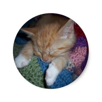 Sleeping Kitten on Colorful Afghan Classic Round Sticker
