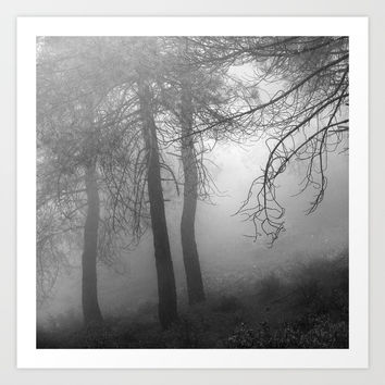 """Dream forest BW"". Living in a dream... by Guido Montañés"