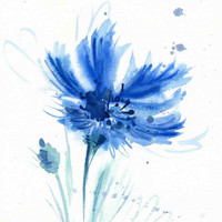 Cornflower watercolor - Blue Watercolor Flower Print - Watercolor Flower Painting - Flower Wall Decor - Cornflower Poster Giclee wall print