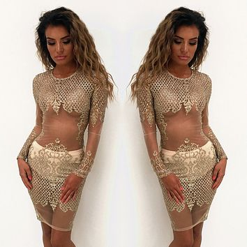 Fashion Bronzing Sequin Perspective Gauze Long Sleeve Bodycon Pencil Mini Dress