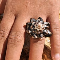 Sea Shell Ring- Size 7