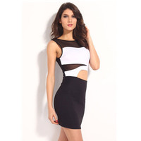 SIMPLE - Fashionable Sexy Sleeveless Clubbing Party One Piece Dress b3505