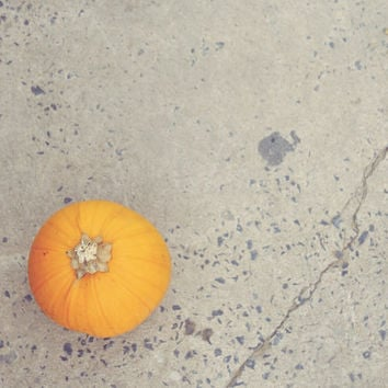 Fall Photography | Orange Pumpkin | Rustic Neutral Colors | Fall Harvest  at the Pumpkin Farm | Autumn Art Print | Minimalist Fall Photo
