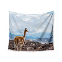 """Lama Outlook"" Looking Into the Distance Wall Tapestry"