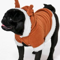 Novelty Christmas Dog Reindeer Outfit | Boohoo