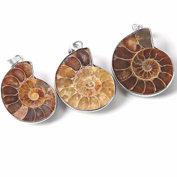 Natural Stone Ammonite Fossils Seashell Snail Pendants