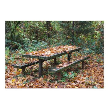 "Picnic Bench 19"" x 13"" Photo Enlargement"