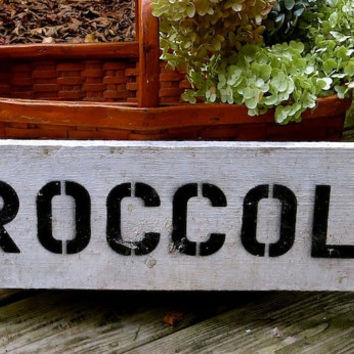 Vintage White Painted Wooden Sign, Broccoli, Farm Stand Grocer, Stenciled Hand Painted Advertising, Salvage, Shabby Cottage Garden Decor