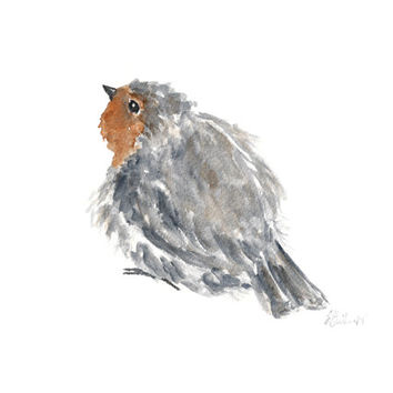 robin bird, watercolor painting original, English robin bird art, watercolor bird painting, nature watercolor, grey orange, little bird, 8X6
