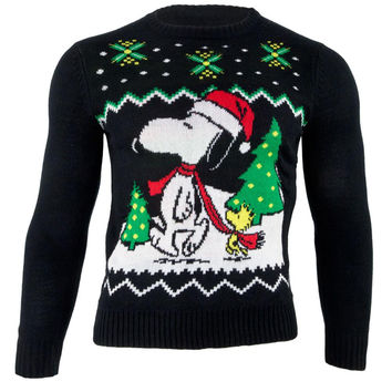 Peanuts - Snoopy Christmas Youth Sweater