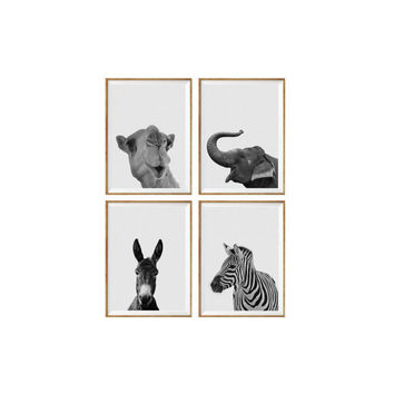 Set of 4 Prints Animal Camel, Elephant, Donkey, Zebra Nursery Animal Wall Art, Black White Nursery Decor, Animal Print, Nursery Poster *54*