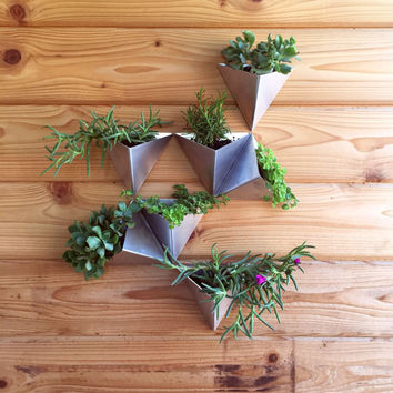 Tessellations  // Set of 50 //  Modern Wall Planter
