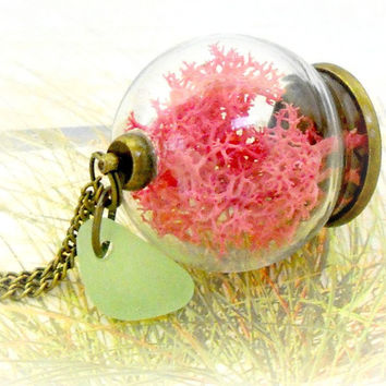 Terrarium Jewelry Genuine Sea Glass Necklace Antique Brass Dried Sea Weed Pendant