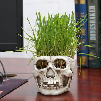 New resin flower pot skull planters for succulents indoor flowerpot craft ornaments