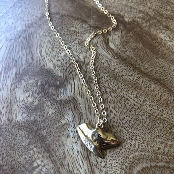 Limited Edition Shark Tooth Necklace