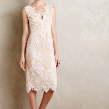 Sevilla Lace Sheath by Erin Fetherston Ivory