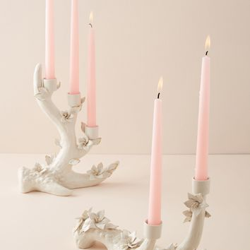 Flowering Bough Candelabra