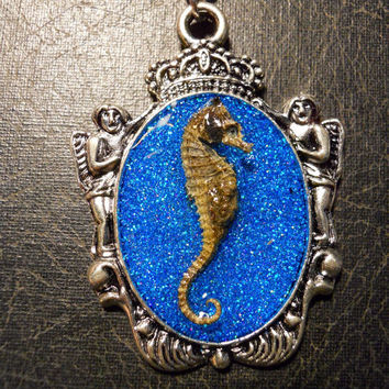 Pregnant Royal Cherubs Pygmy Seahorse Specimen in Resin Blue Cameo Necklace
