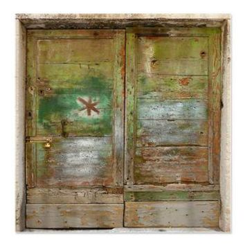 Rustic Distressed Green Doors Shower Curtain> Coastal, Vintage and Urban Chic Shower Curtains> Rebecca Korpita Coastal Design