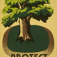 Protect Your Parks Vintage WPA Poster on 11x17 PopMount Ready to Hang FREE SHIPPING