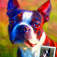 Custom Pet Portrait - your photo, my crazy RISK FREE portrait offer