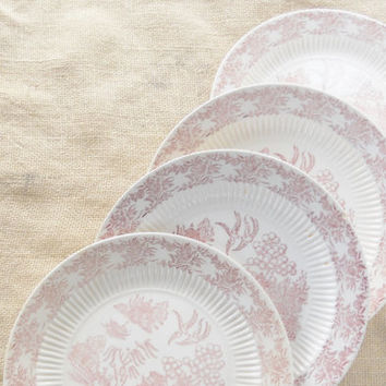 Gorgeous Cottage Style Antique Hamilton Ross Ming Red Dinner Plates, Set of 4, Red Willow, Pink Willow, Tea Party, Shabby Chic, Ca. 1950's