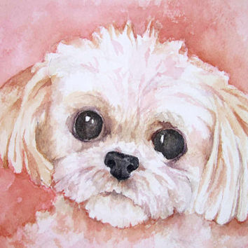 Pet Sympathy Gifts - Shih Tzu Painting - Dog Watercolor - Custom Pet Portrait Watercolor Painting