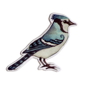 Blue Jay Bird Magnet