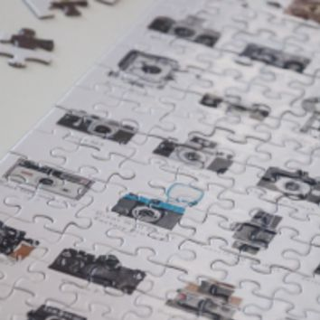 A Visual Compendium of Cameras Puzzle