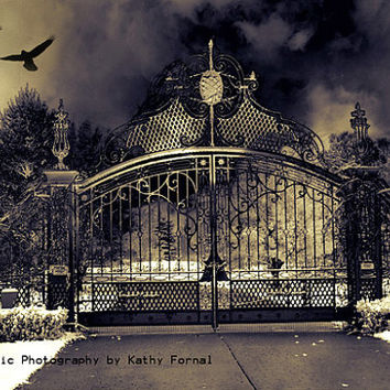 "Gate Photography, Haunting Surreal Gothic, Gate, Eerie Dark Gate With Ravens, Halloween Spooky Gate, Fine Art Photograph 8"" x 12"""
