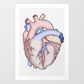 Anatomical Heart Art Print by JodiYoung