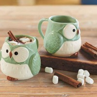 Mint Green Owl Mugs (set of 2)