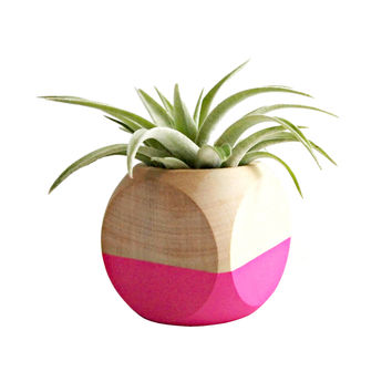 Cube Planter in Neon Pink