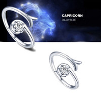 925 Sterling Silver 12 Constellations Zodiac Crystal Ring (Capricorn)