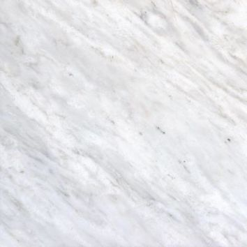 MS International Greecian White 12 in. x 12 in. Polished Marble Floor and Wall Tile (5 sq. ft. / case)-THDVENWHT1212 at The Home Depot