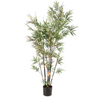 8' Potted Black Bamboo X14 2334 Leaves