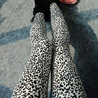 Amour-Women Popular Full Leopard /Zebra Print Animal Pattern Ankle Length Footless Legging Tregging Tight (leopard)