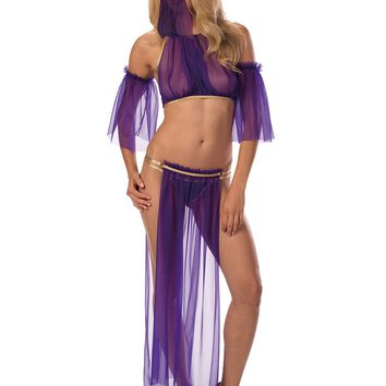 """Just Damn Sexy Belly Dancer"" Costume"