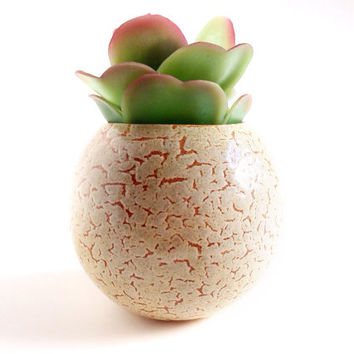 Succulent Planter - Small Planter - Ceramics and Pottery