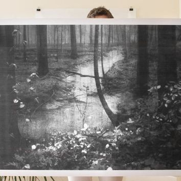 Woods Poster
