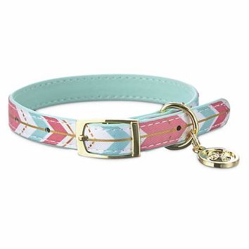 Bond & Co. Multi Triangle Collar for Small Dogs | Petco