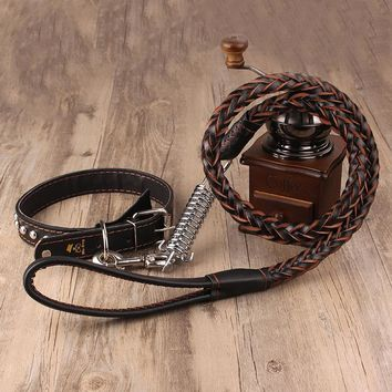 Leather Collar & Leash